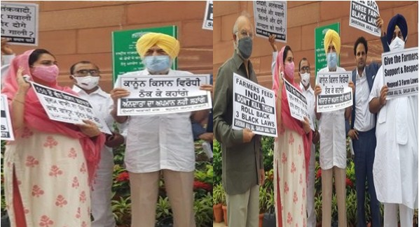 Shiromani Akali Dal and BSP MPs staged a demonstration outside Parliament on the fifth day against agricultural laws
