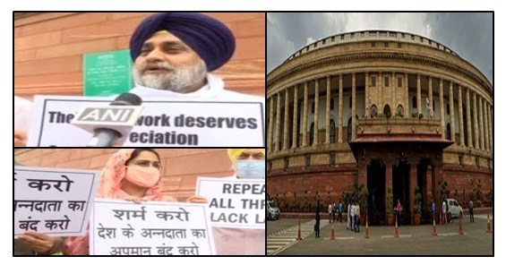 Shiromani Akali Dal is the only party against the agricultural laws