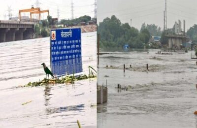Weather Alert Haryana High alert issued in areas adjoining Yamuna river, water will reach Delhi in 72 hours
